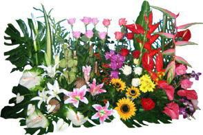 flowers in Phuket доставка цветов на Пхукете